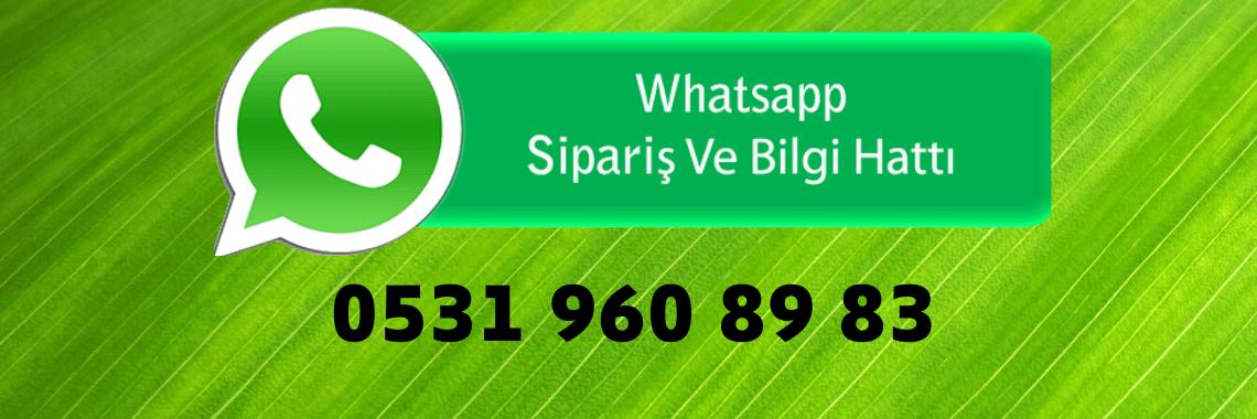 whatspp iletişim